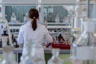 El Plan de Investigación Científica e Innovación Tecnológica de la Comunidad de Madrid beneficia a casi 11.000 investigadores