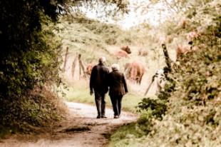 Pozuelo de Alarcón es la ciudad con la esperanza de vida más alta de toda España, con menor tasa de paro y con mayor renta media