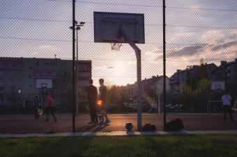 La Comunidad, a favor de reconocer a monitores y entrenadores federativos en la Ley de profesiones del deporte