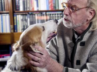 Las mascotas ayudan a reducir el aumento del 22% del estrés derivado de la pandemia