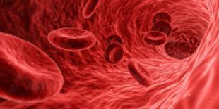 Análisis de sangre en los mejores centros de España