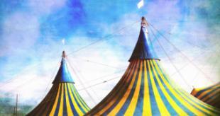 La Comunidad de Madrid prepara un festival dedicado al mundo del circo adaptado a la evolución del COVID-19